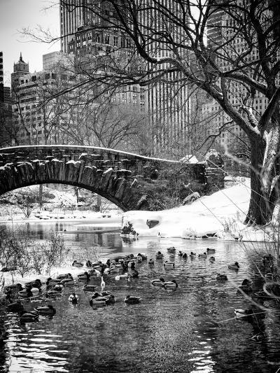 The Gapstow Bridge of Central Park in Winter, Manhattan in New York City-Philippe Hugonnard-Photographic Print