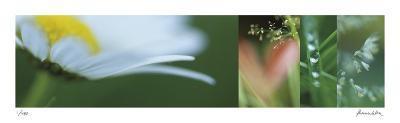 The Garden 2-Florence Delva-Giclee Print