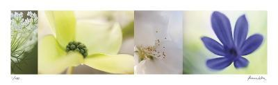 The Garden 4-Florence Delva-Giclee Print