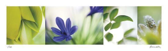 The Garden 5-Florence Delva-Giclee Print