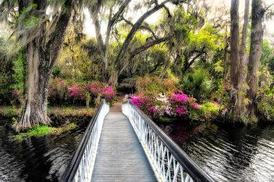 The Garden Bridge-Daniel Burt-Photographic Print