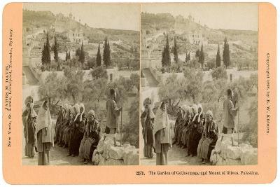 The Garden of Gethsemane and the Mount of Olives, Palestine, 1898-BW Kilburn-Giclee Print