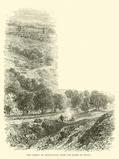 The Garden of Gethsemane, from the Slopes of Olivet--Giclee Print