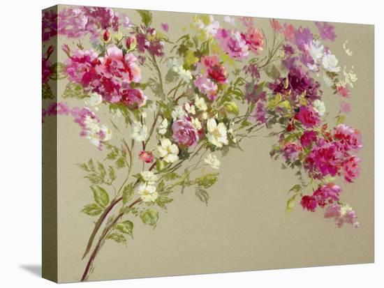 The Garden of the Rose I-Nel Whatmore-Stretched Canvas Print
