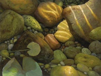 The Garden Pond-Stephen Stavast-Giclee Print