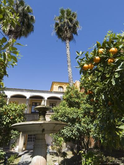 The Gardens of the Real Alcazar, Santa Cruz District, Seville, Andalusia (Andalucia), Spain, Europe-Robert Harding-Photographic Print
