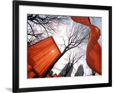 """""""The Gates"""" are Shown in Central Park in New York with Flowing Fabric the Color of a Sunrise--Framed Photographic Print"""