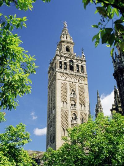 The Giralda, the Moorish Minaret and Observatory, Seville, Andalucia (Andalusia), Spain, Europe-James Emmerson-Photographic Print
