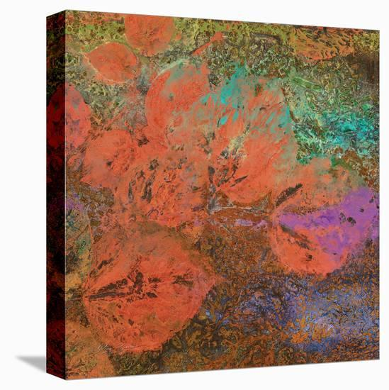 The Glades A-Jay Zinn-Stretched Canvas Print