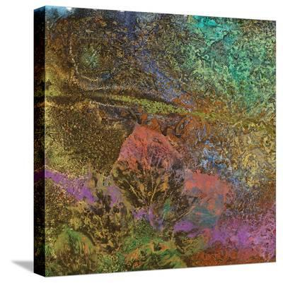 The Glades C-Jay Zinn-Stretched Canvas Print