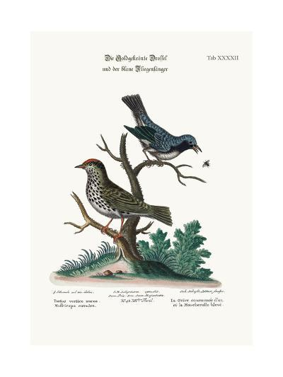 The Golden-Crowned Thrush and the Blue Flycatcher, 1749-73-George Edwards-Giclee Print