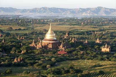 The Golden Stupa of Dhammayazika Pagoda Amongst Some Other Terracotta Buddhist Temples in Bagan-Annie Owen-Photographic Print
