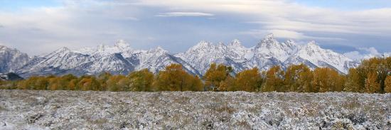 The Grand Teton Mountain Range Covered in Snow During the Fall-Barrett Hedges-Photographic Print