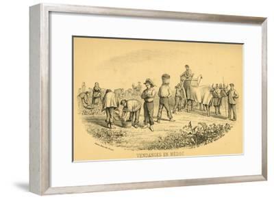 The Grape Harvest, Medoc--Framed Giclee Print