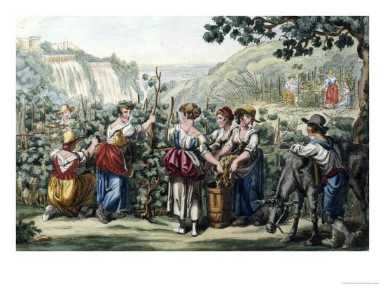 The Grape Harvest-Bartolomeo Pinelli-Giclee Print