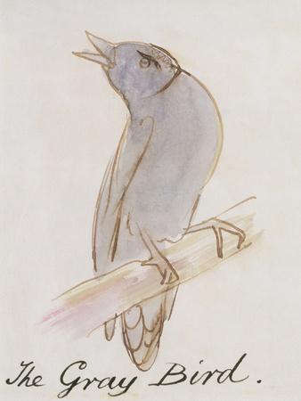https://imgc.artprintimages.com/img/print/the-gray-bird-from-sixteen-drawings-of-comic-birds_u-l-odnvc0.jpg?p=0