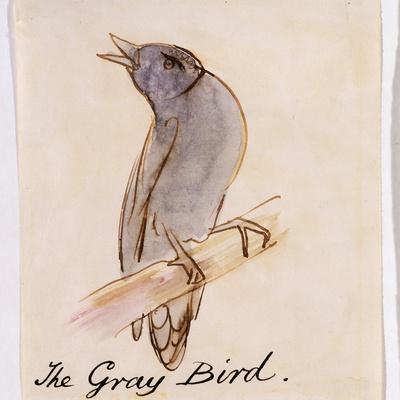 https://imgc.artprintimages.com/img/print/the-gray-bird_u-l-pf5buk0.jpg?p=0
