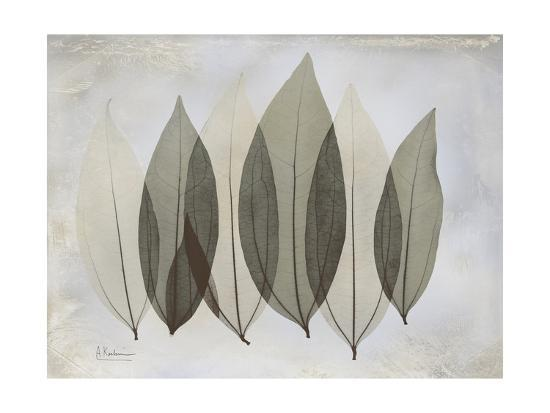 The Grays 5-Albert Koetsier-Premium Giclee Print