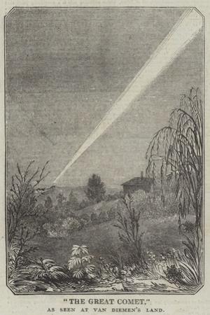 The Great Comet, as Seen at Van Diemen's Land