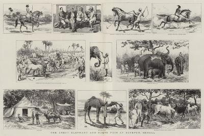 The Great Elephant and Horse Fair at Sonepur, Bengal-Adrien Emmanuel Marie-Giclee Print