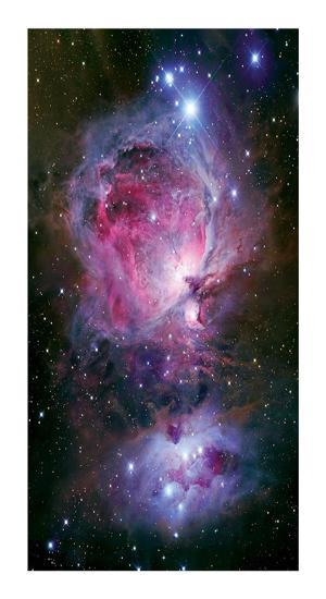 The Great Nebula in Orion-Robert Gendler-Giclee Print