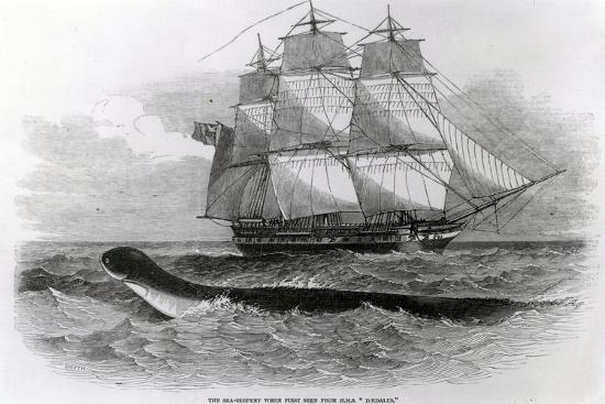The Great Sea-Serpent When First Seen from H.M.S. Daedalus--Giclee Print