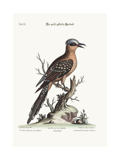 The Great Spotted Cuckow, 1749-73-George Edwards-Giclee Print