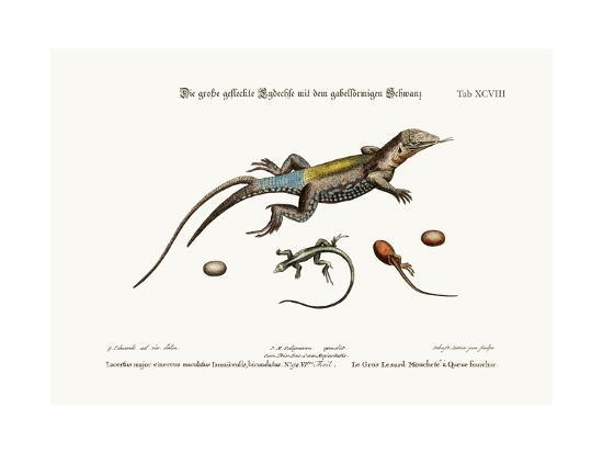 The Great Spotted Lizard with a Forked Tail, 1749-73-George Edwards-Giclee Print