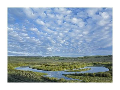 The Green River, Bridger-Teton National Forest, Wyoming-Tim Fitzharris-Art Print