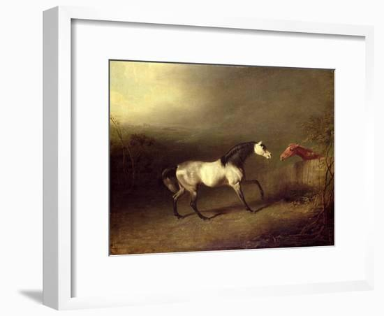 The Grey Arab-Sawrey Gilpin-Framed Giclee Print