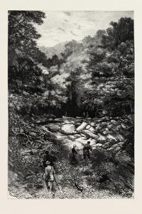 The Grotto of St. Andre Near Nice, France , 1882
