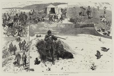 The Grouse Harvest-John Charlton-Giclee Print