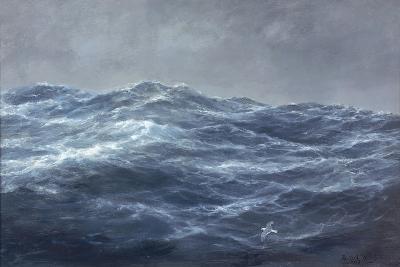 The Gull's Way-Richard Willis-Giclee Print