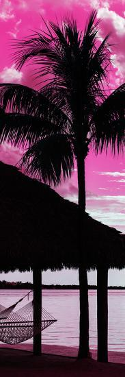 The Hammock and Palm Tree at Sunset - Beach Hut - Florida-Philippe Hugonnard-Photographic Print