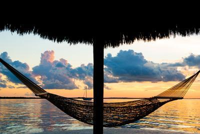 The Hammock at Sunset - Miami - Florida-Philippe Hugonnard-Photographic Print