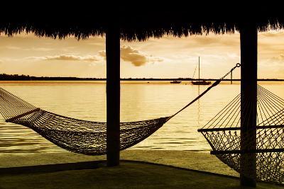 The Hammocks at Sunset - Florida-Philippe Hugonnard-Photographic Print