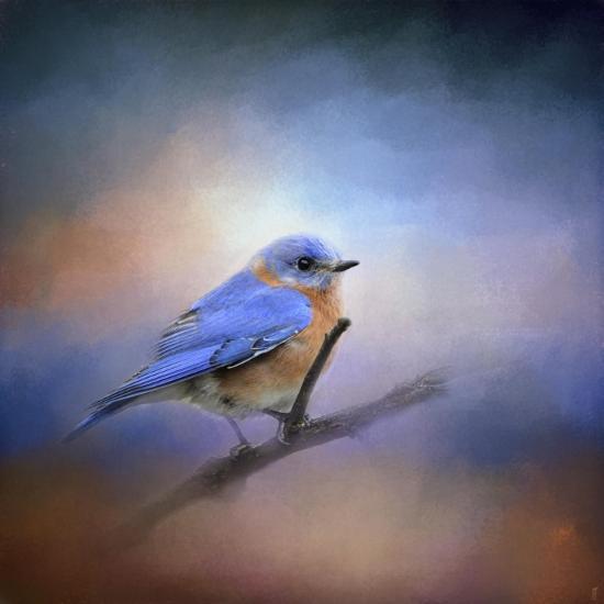 The Happiest Blue-Jai Johnson-Giclee Print