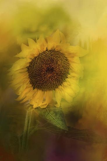 The Happiest Flower-Jai Johnson-Giclee Print