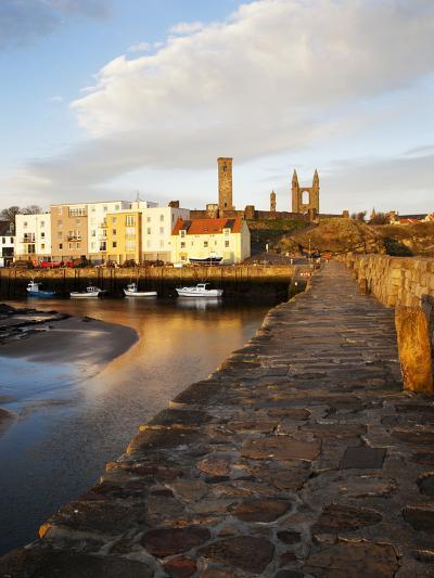 The Harbour at Dawn, St Andrews, Fife, Scotland-Mark Sunderland-Photographic Print