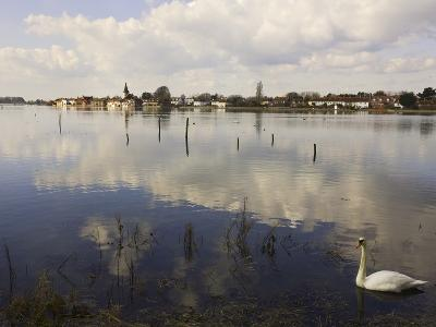 The Harbour, Bosham, Near Chichester, West Sussex, England, United Kingdom, Europe-Jean Brooks-Photographic Print