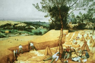 The Harvesters, 1565-Pieter Bruegel the Elder-Giclee Print