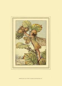 The Hazelnut Fairy