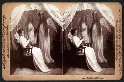 https://imgc.artprintimages.com/img/print/the-heavenly-twins-1899_u-l-pps4pr0.jpg?p=0