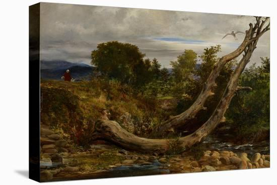 The Heron Disturbed, C.1850-Richard Redgrave-Stretched Canvas Print
