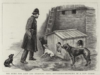 The Home for Lost and Starving Dogs, Battersea, Bringing in a New Comer-Charles Paul Renouard-Giclee Print