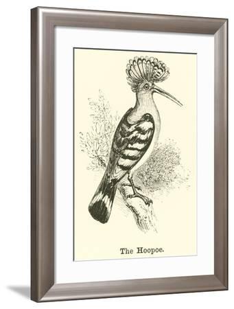 The Hoopoe--Framed Giclee Print