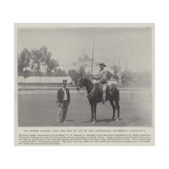 The Horse Bugler, Sold for £2627 in Aid of the Australian Bushmen's Contingent--Giclee Print