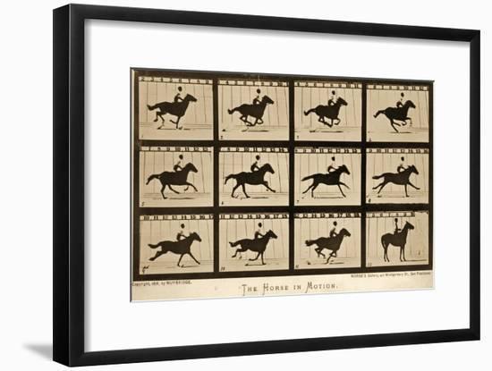 The Horse in Motion, 'Animal Locomotion' Series, C.1878-Eadweard Muybridge-Framed Giclee Print