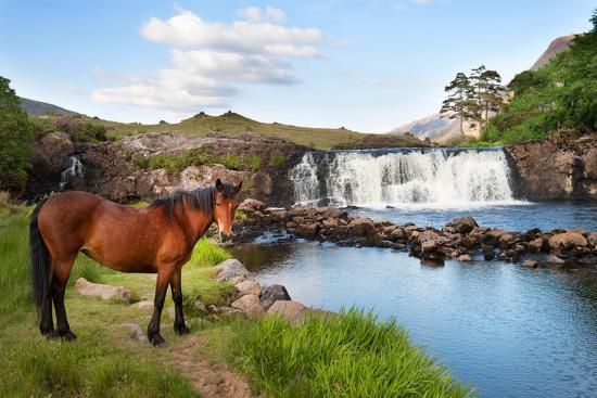The Horse Near the Waterfall-Philippe Sainte-Laudy-Photographic Print