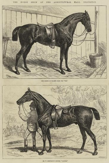 The Horse Show at the Agricultural Hall, Islington-Alfred Sheldon-Williams-Giclee Print